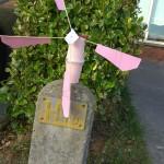 Rhys' Windmill - R12