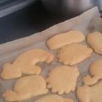 Cookies - Joel