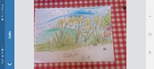 Daffodils by Cailin - Senior Infants