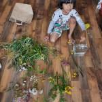 Deenash's wildflowers