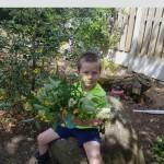 Cailin (senior infants) in the garden