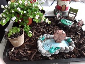 Ciarán Counihan G3- Tray Garden Challenge