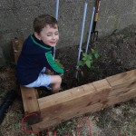 Ben's (R2) raised garden