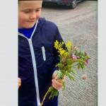 Jake's (Senior Infants) Wildflowers